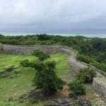 ぐにぐに石垣の内側に土を盛り築城したとか。