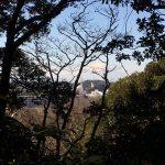 去年は見えなかった、大船の観音さまの真後ろに富士山!