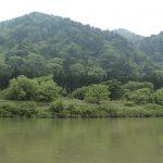 山肌の丸っこい緑は天然の神代杉、川面に流れるはウグイスとガイドさんの歌声。長閑なり。