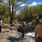 散策路の丸太橋が流されていたため、コースの途中で散策断念。 川岸の木がメタメタに倒れ、中洲の木々の根元の高さに流木がたくさん引っかかってます。 八ヶ岳周辺の登山道も、台風24号でかなりやられたらしい……